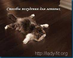 pohudenie_dlya_lenivih