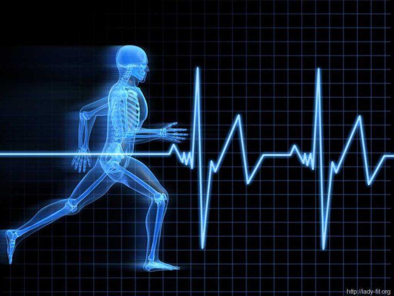 Измерение пульса в покое и после нагрузки