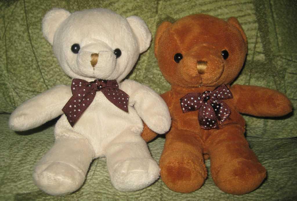 Теddy's bear